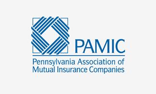 PAMIC_Logo_2x_D_323x194