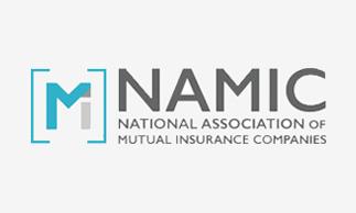 NAMIC_Logo_2x_D323x194