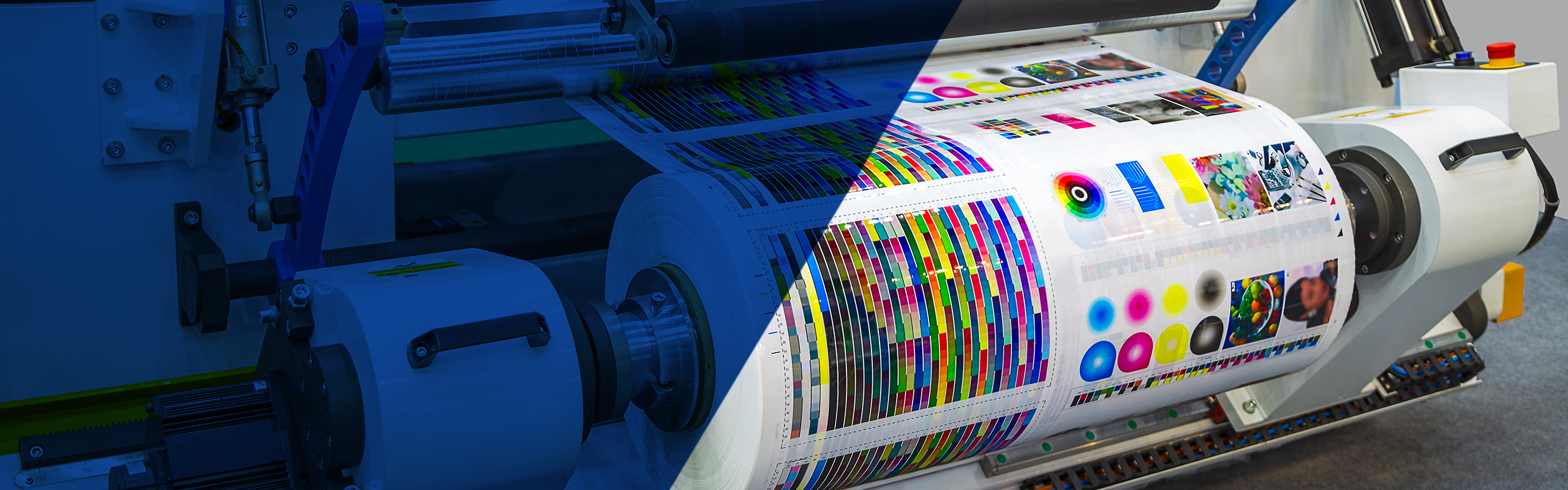 Risky-Business-Commercial-Printing-Banner